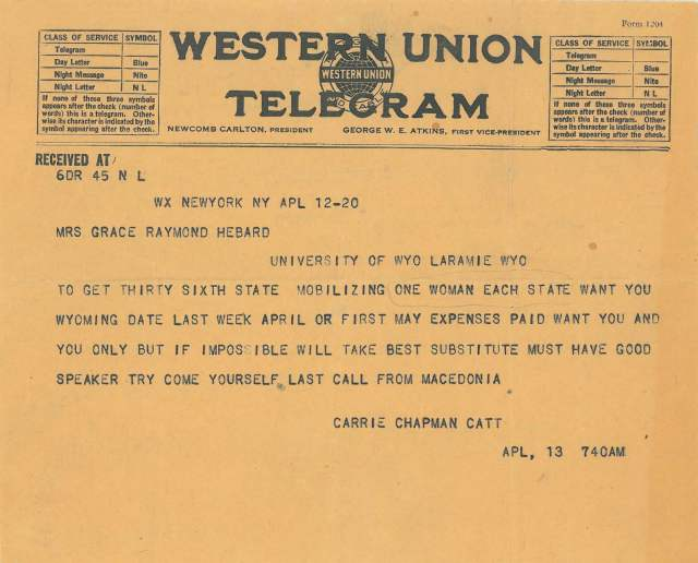 catt telegram