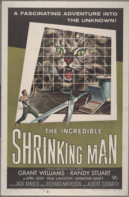 Shrinking man